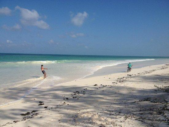 Zanzibar Kite Paradise: ZKParadise