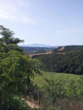 Agriturismo San Lorenzo: Vista sulle terre senesi