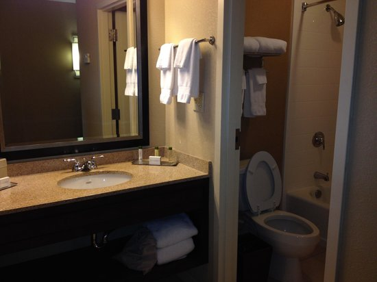 Doubletree by Hilton Hotel Columbia: Small tub and shower area