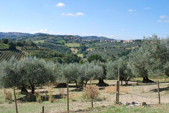 Relais Casamassima: Property
