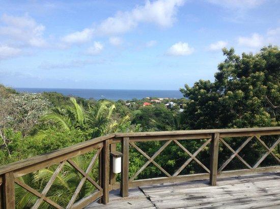 Roatan Bed & Breakfast Apartments: Aussicht vom Dach