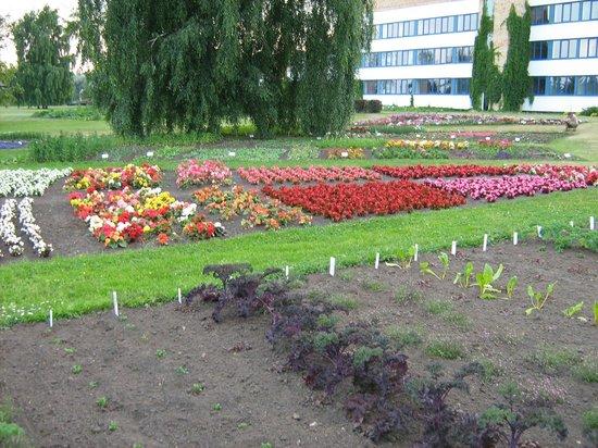 Дендрологический парк садоводческого техникума Булдури