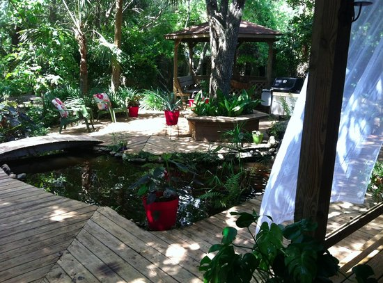 Sweet Magnolia Inn Bed and Breakfast: Tropical Garden and Koi Pond