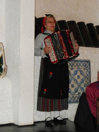 Timpanas: The accordion player from the folkloric group.