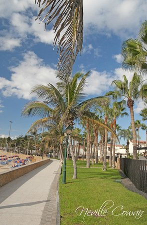 Puerto Caleta: Beach front only five minutes walk away
