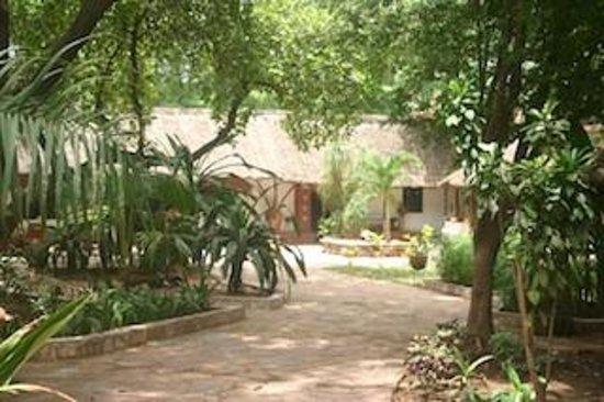 Le jardin de San Toro