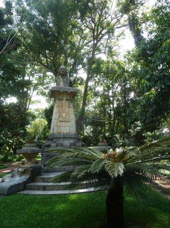 Jardin Botanico: Im Garten
