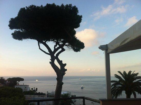 Villa Marina Capri Hotel & Spa : View from Castelo room