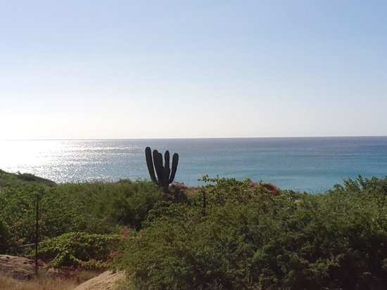 El Delfin Blanco: the view next to the resort.