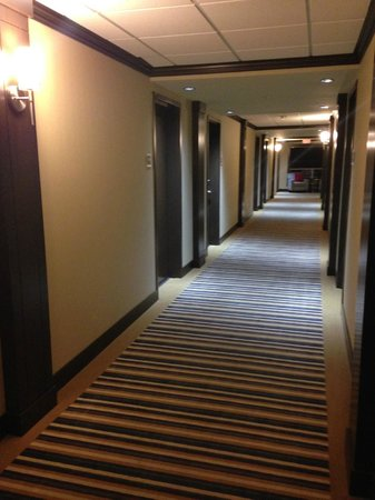 Four Points by Sheraton Edmonton Gateway : The hallway