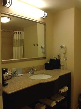 Hampton Inn Jacksonville-I-295 East/Baymeadows: large bathrom vanity area