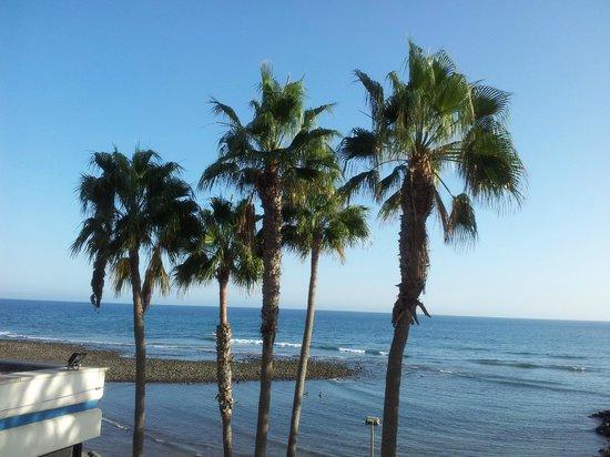 IFA Faro Hotel: Meersicht