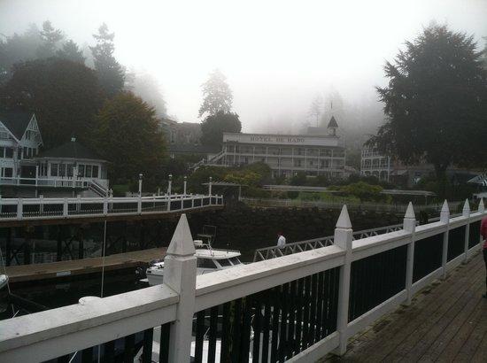 Roche Harbor Resort: Harbor View
