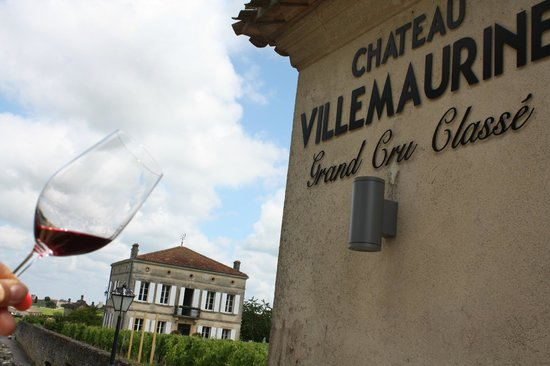 Chateau Villemaurine : This shot gives me a great memory of my wine tour.