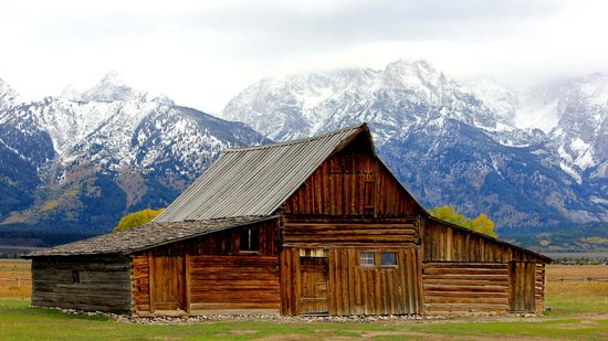 Jackson Hole Eco Tour Adventures: Mormon Row