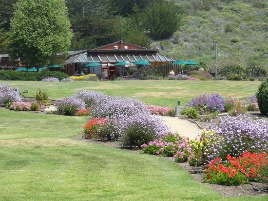 Ragged Point: jardins do hotel/resort