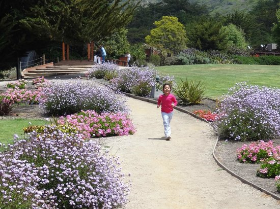 Ragged Point: Jardins