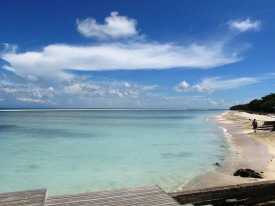 Gili Life Homestay: Beach