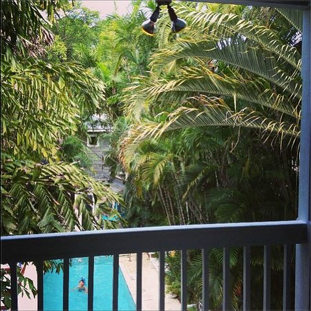 Ambrosia Key West Tropical Lodging: View from Treetop Too porch