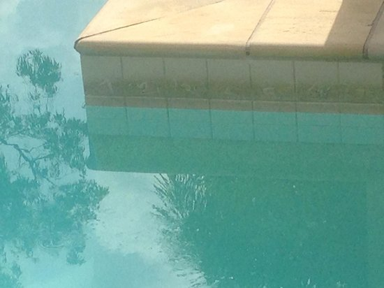 Pullman Palm Cove Sea Temple Resort & Spa: Pool