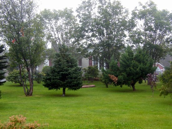 Northwest Lodge Bed & Breakfast : Beautiful, quiet setting with lots of trees and flowers