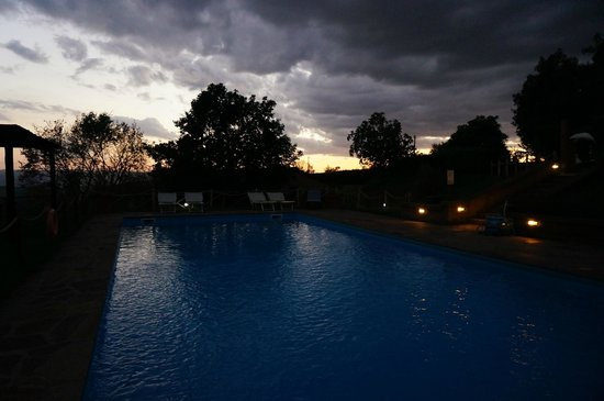 Antica Olivaia : The swimming pool at dusk