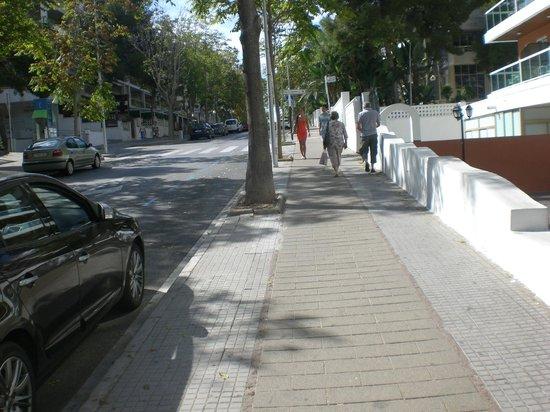 Ohtels Villa Dorada: HILL out side hotel