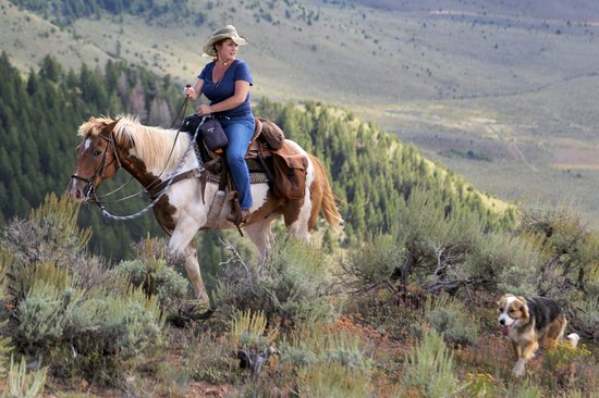 Black Mountain Ranch: Trail riding