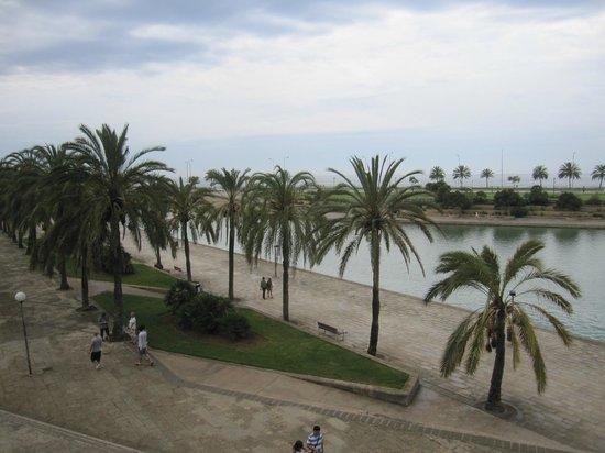 Parque del Mar: Vista del parque.