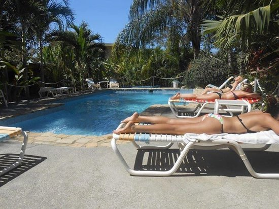 Zula Inn Aparthotel: Pool