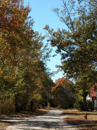 Browns Mills, NJ: whitesbog farm village