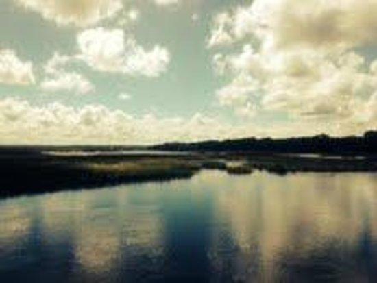 St. Marys Railroad: Views over marsh