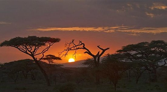 Ndutu Safari Lodge : Sunrise in Ndutu region