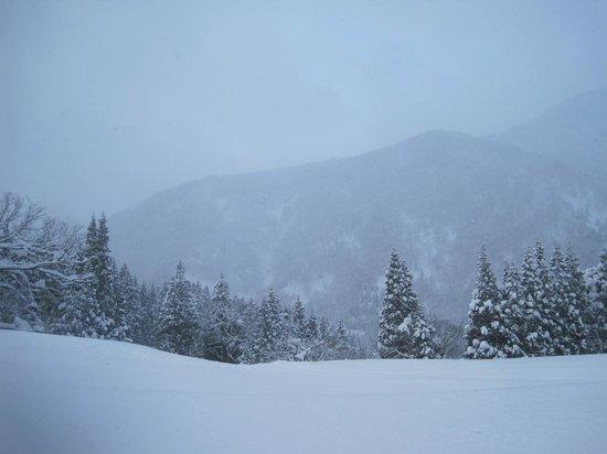 Minshuku Nakanoya : 雪景色