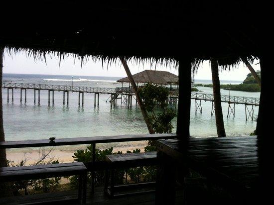 Sagana Resort: VIEW FROM TOWER