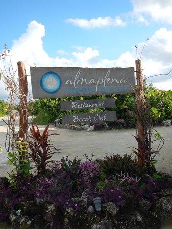 Almaplena Eco Resort & Beach Club: la entrada