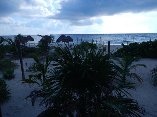 Almaplena Eco Resort & Beach Club: hermoso!