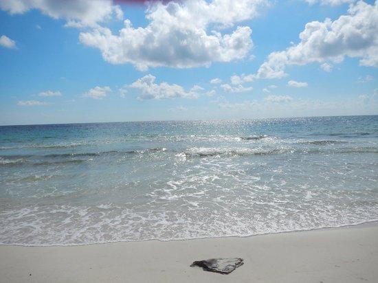 Almaplena Eco Resort & Beach Club: un hermoso dia soleado