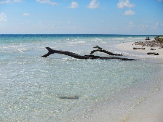 Almaplena Eco Resort & Beach Club: la playa esta super tranquila