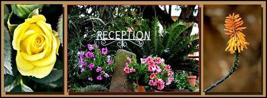 Petra's Country Guesthouse: Reseption