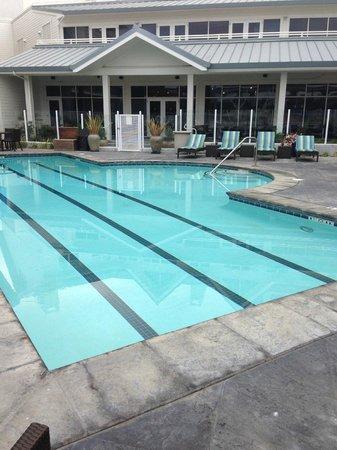 Sheraton Sonoma County - Petaluma: sonoma/petaluma sheraton pool