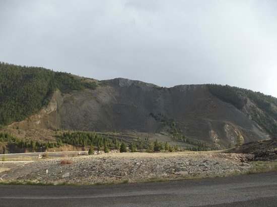 Earthquake Lake: Part of mountain where landslide occurred. Note that those are full sized trees.