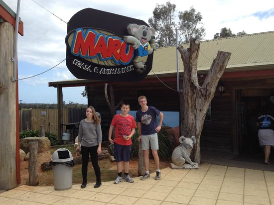 Maru Koala and Animal Park: Maru Koala Park