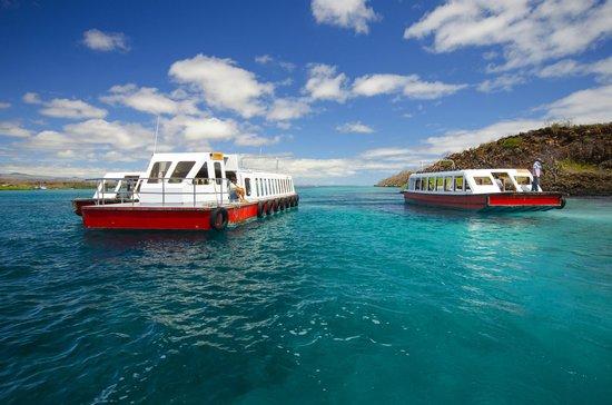 Scuba Galapagos: Arrival