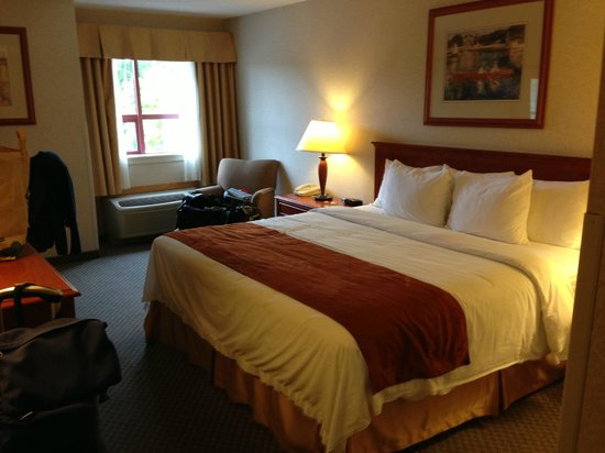 Comfort Inn & Suites: Queen size bed