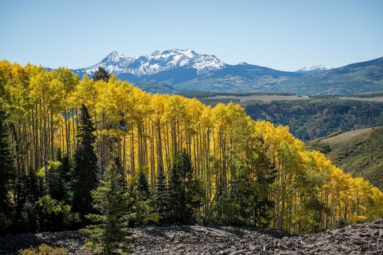 Telluride, CO: Almost Peak color!