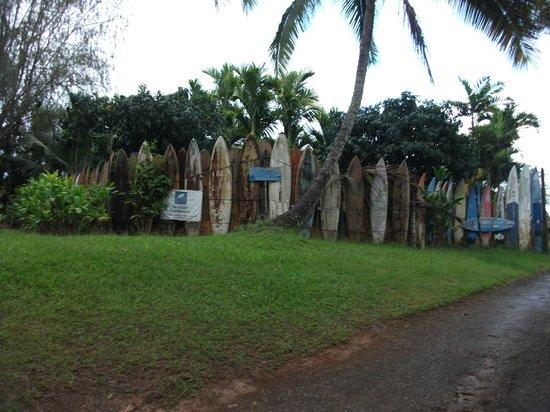 Hana 4 Less Tours: The real Surf Board Graveyard!