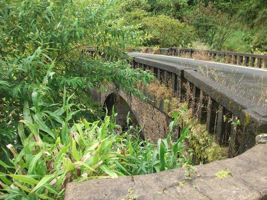 Hana 4 Less Tours: One of the many narrow bridges