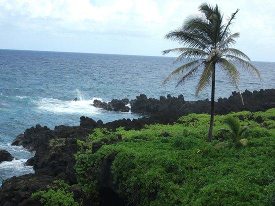 Hana 4 Less Tours: Crashing waves from the Road to Hana