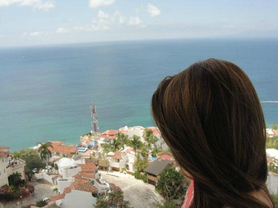 Grand Miramar All Luxury Suites & Residences : Vista de todo Vallarta